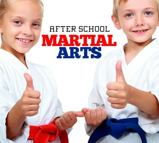 After School Martial Art 2
